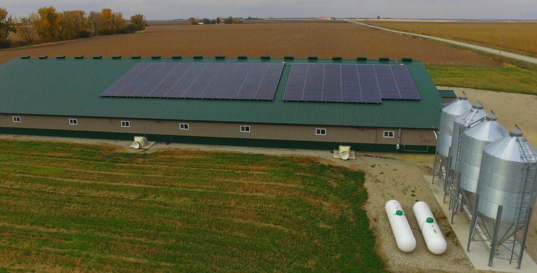 solar panels at farm